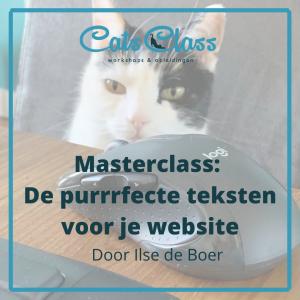 Masterclass websitetekst schrijven
