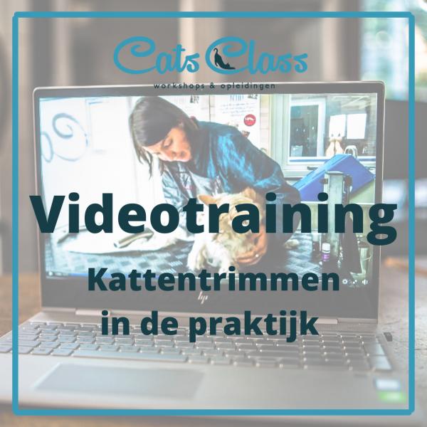 Videotraining